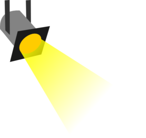 Committee Spotlight
